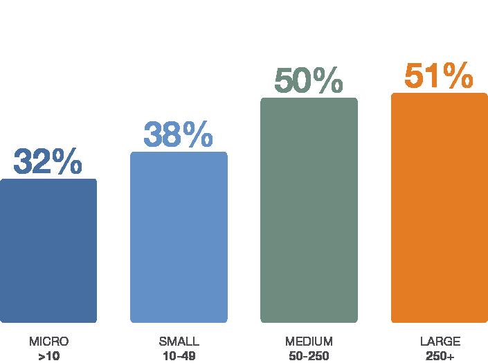 TS Test Charts - Size